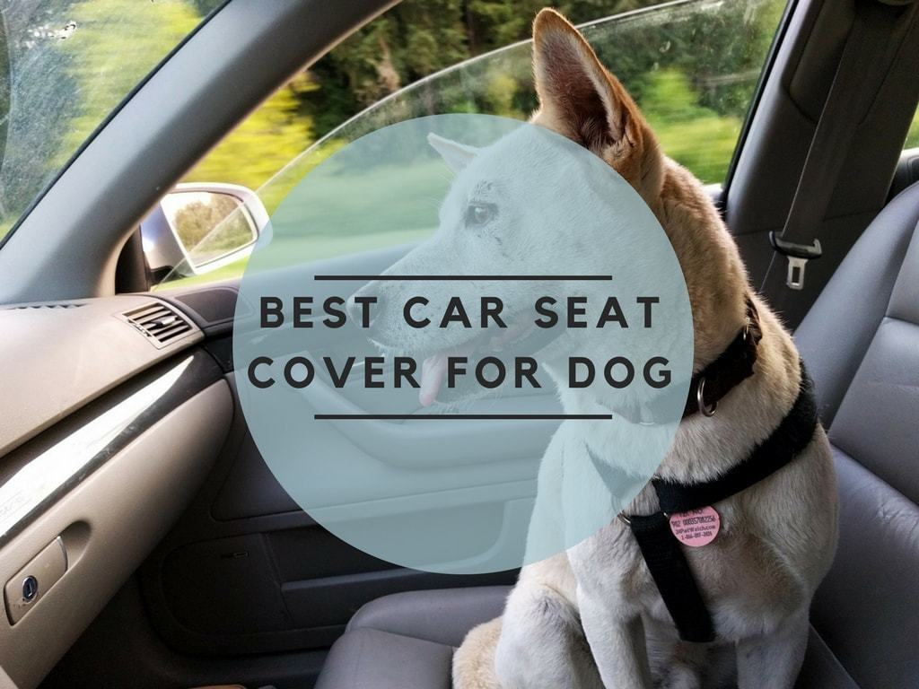 Best Dog Car Seat >> What Is The Best Car Seat Cover for Dog? All You Need To ...