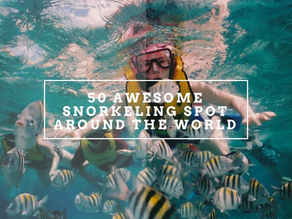 The best snorkeling spot around the world
